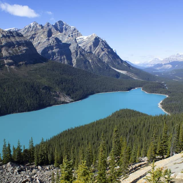 A view of Peyto Lake in Banff National Park