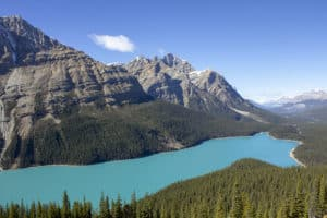 The aqua blue waters of Peyto Lake, Alberta