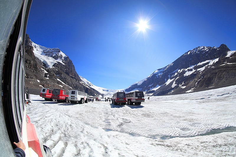 Buggies on the Columbia Icefield