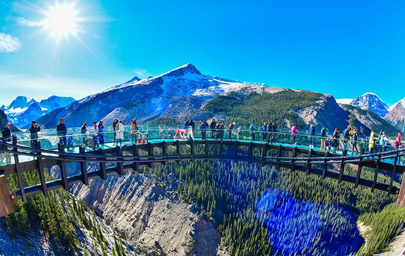 The Columbia Icefield Skywalk puts you on a glass walkway high above the canyon.