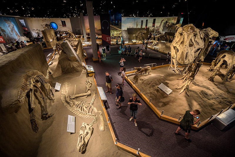 The Royal Tyrrell Museum in Drumheller, Alberta.