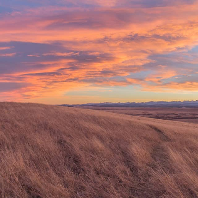 An Alberta prairie sunset
