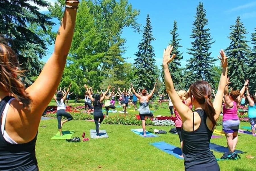 Yoga in the park with Calgary Outdoor Yoga