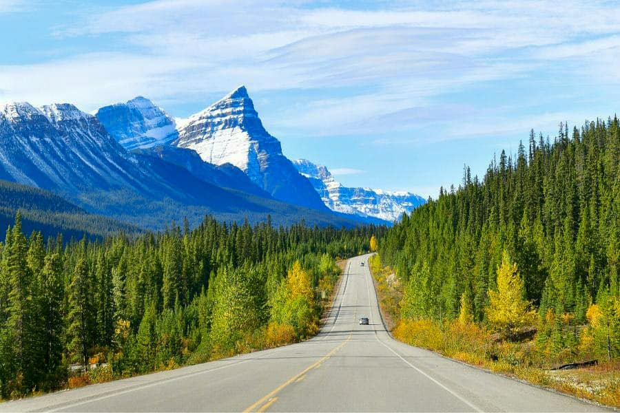 A mountain road in Alberta