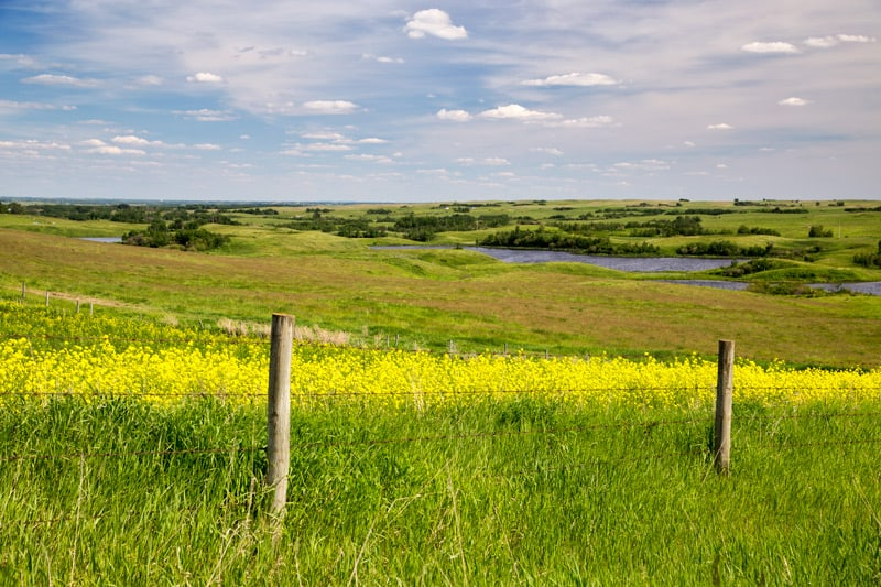 A prairie scene along the Boomtown Trail