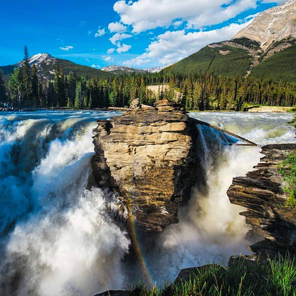 The powerful Athabasca Falls in Jasper National Park