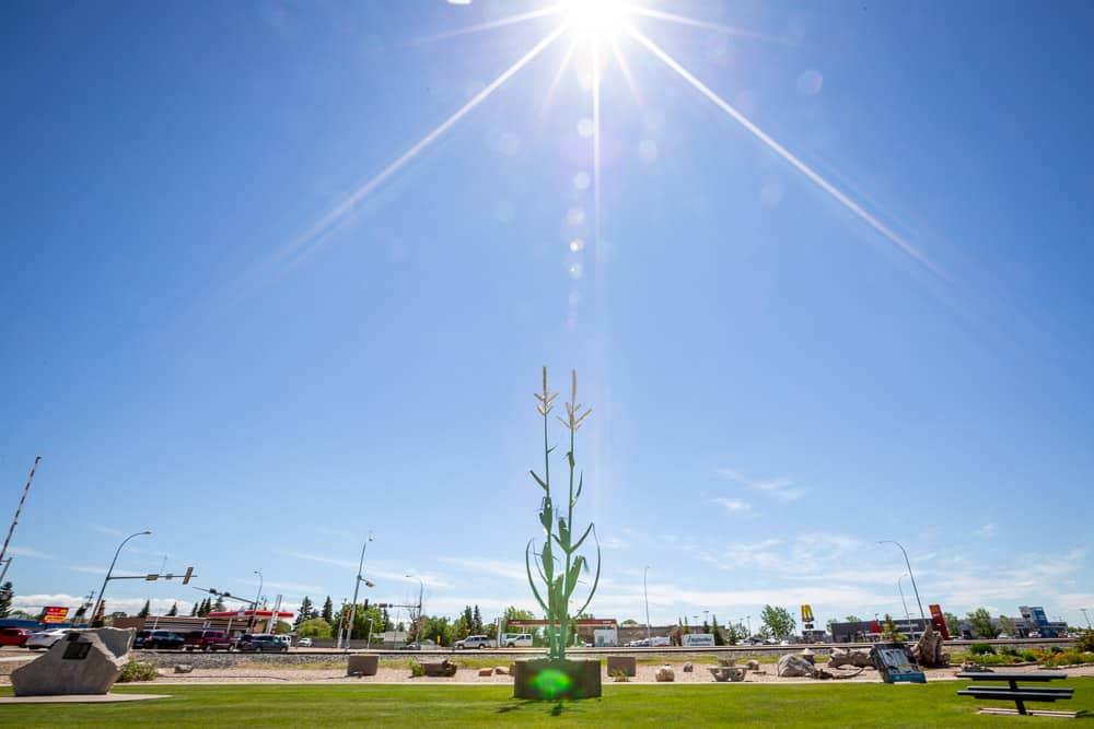 The Giant Corn Stalk in Taber, Alberta
