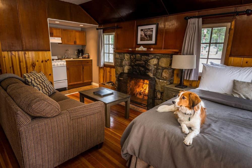 Tekarra Lodge Cabin Jasper, Alberta