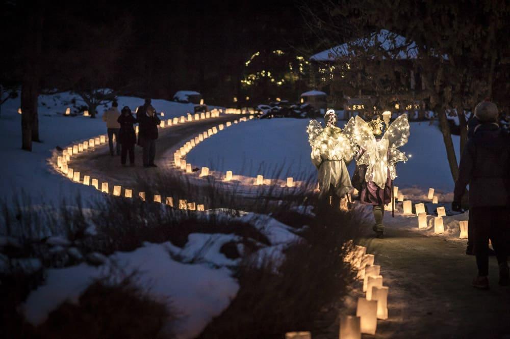 Luminaria Christmas Lights