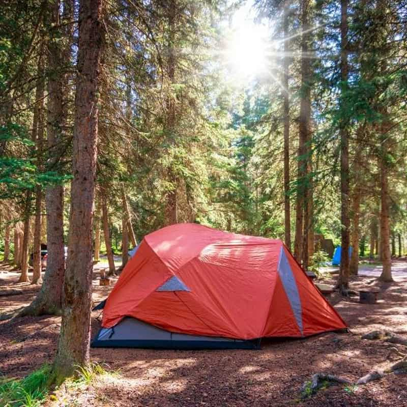 Banff Camping Spots Feature Image