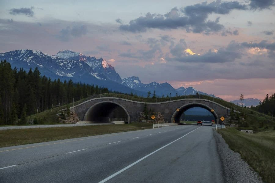 Road to Lake Louise in Banff National Park