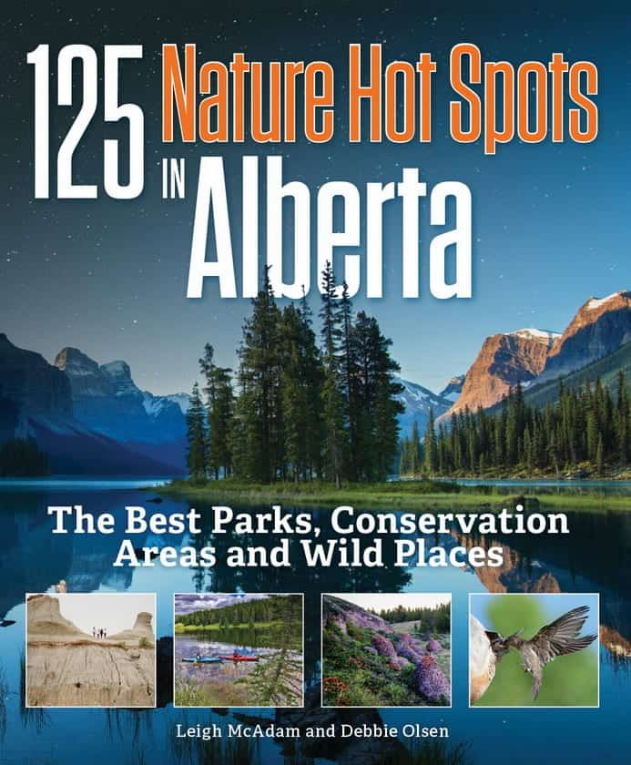 Book cover for 125 Nature Hot Spots in Alberta