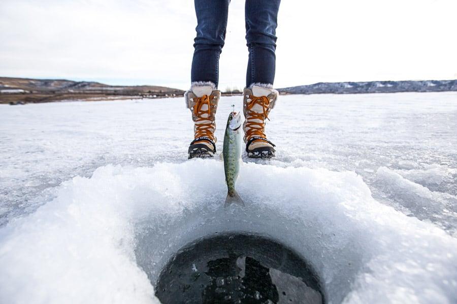 Ice Fishing in Alberta