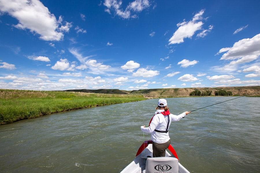 Fly Fishing Near Calgary