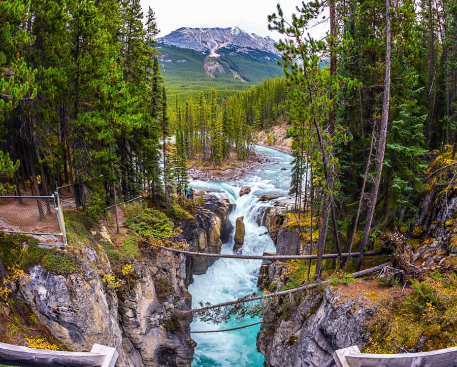 Sunwapta Falls in Jasper National Park is one of the most popular waterfalls in Alberta and Canada.