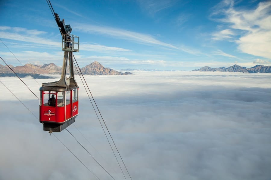 See Jasper from above by taking the Jasper SkyTram above the clouds