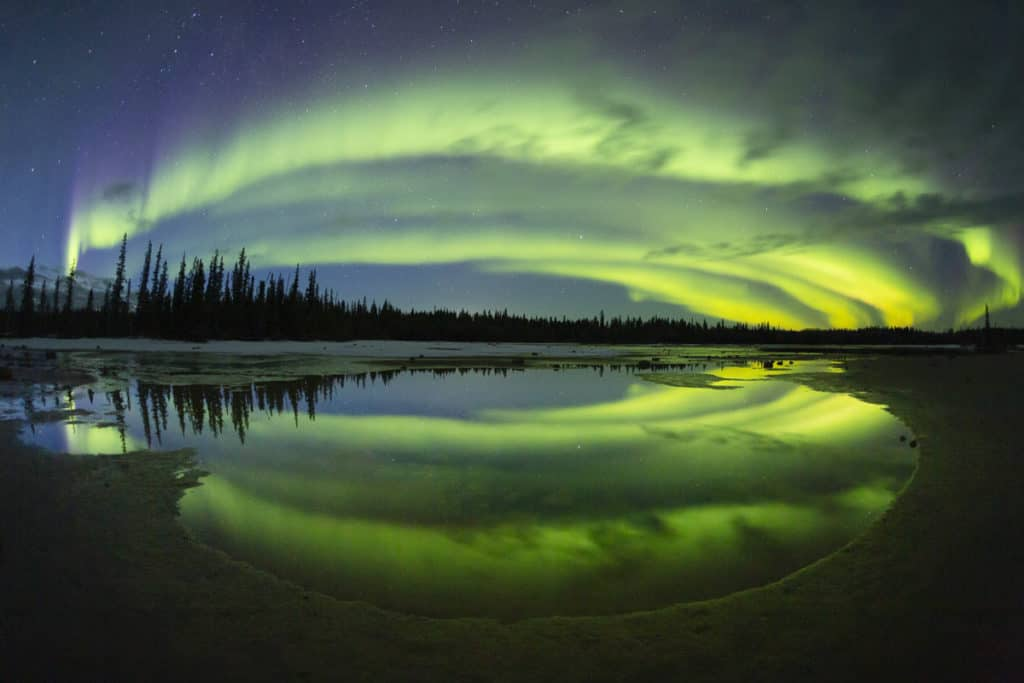Northern Lights in Wood Buffalo National Park